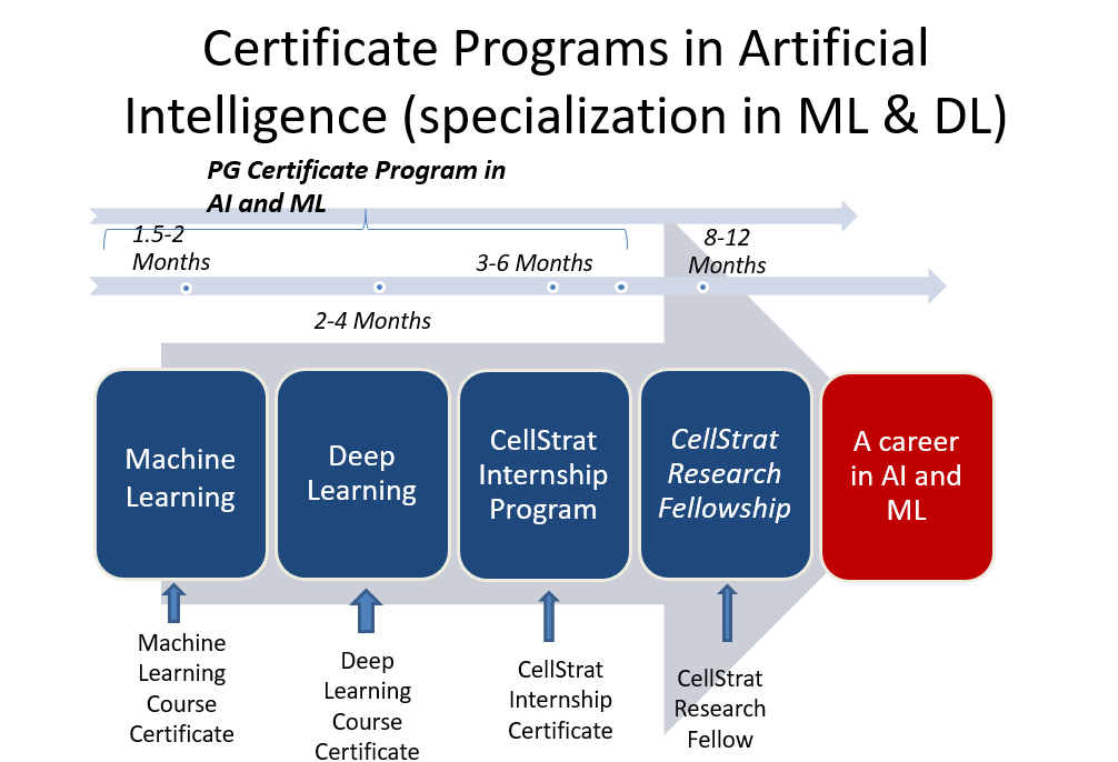 Certificate programs in Artificial Intelligence - Cell Strat/ Woven Link Africa